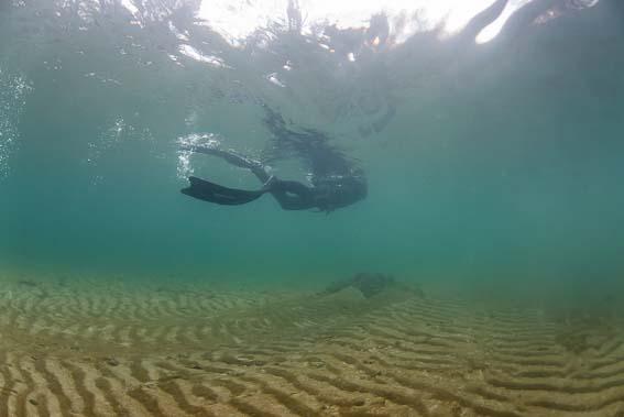 Erster Eindruck unter Wasser - Sichtweite ist gut und ein mit Algen überzogener Sandboden